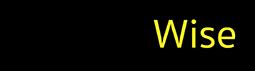 BondWIse™ Adhesive Logo